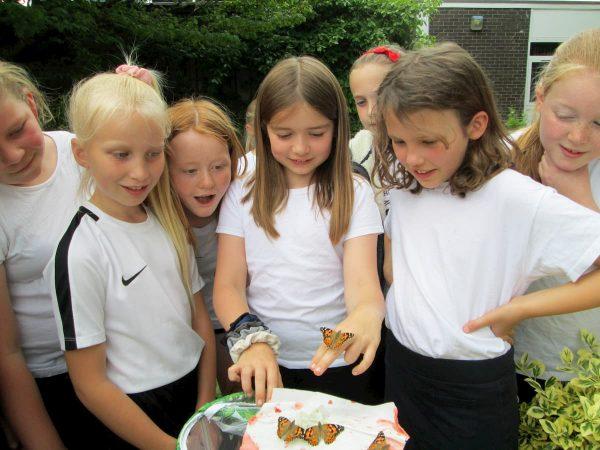 Releasing the class butterflies